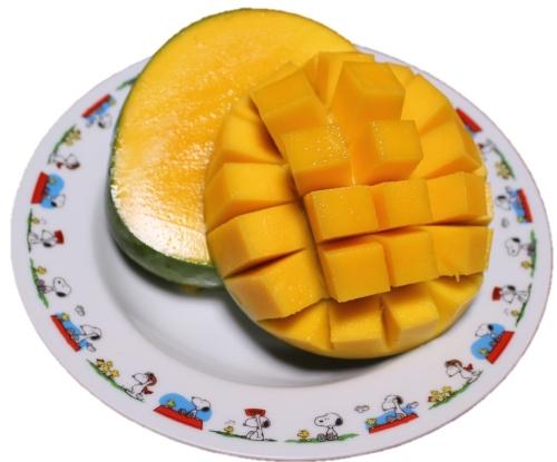 種ありマンゴーの切り方
