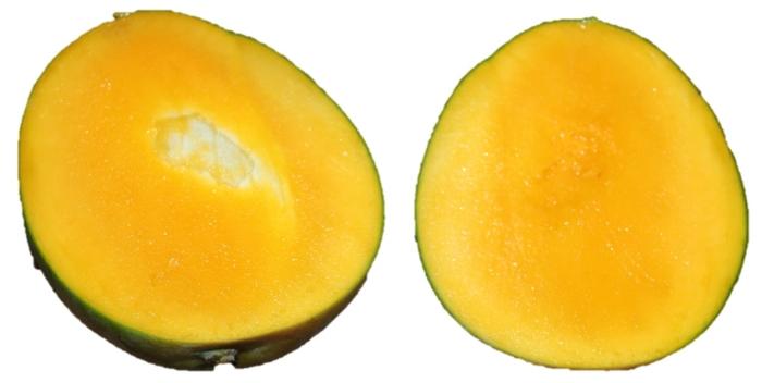 種ありマンゴーの切り方で種が露出!