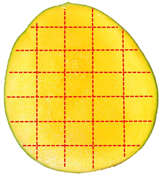 種ありマンゴーを格子状に切る